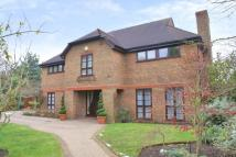 Ashburnham Park Detached house to rent