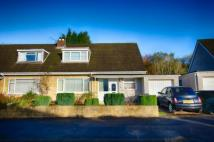 3 bed semi detached home in Brynau Road,  Taffs Well...