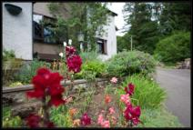 semi detached property in Forest Cottages...