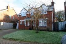 1 bedroom Studio flat to rent in Badger Way, High Wycombe