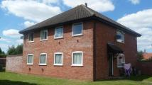Flat in Warren Avenue, Fakenham...