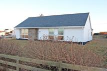 Detached Bungalow in Trearddur Bay, Anglesey...