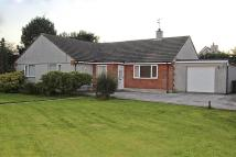 Detached Bungalow for sale in Mynydd Mechell, Amlwch...