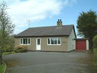 3 bed Detached Bungalow to rent in Caergeiliog, Holyhead