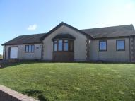 Detached Bungalow to rent in Tan Y Felin, Rhydwyn
