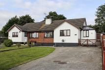 Semi-Detached Bungalow for sale in Tyn Coed Uchaf...