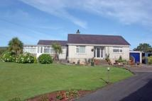 Detached Bungalow for sale in Rhoscefnhir, Pentraeth...