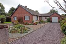 Cae Lleiniau Detached Bungalow for sale