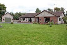 5 bed Detached Bungalow in Llain y Groes, Gwalchmai...