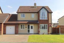 Link Detached House for sale in Bro Ednyfed, Llangefni...