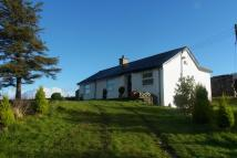 2 bed Detached Bungalow to rent in NEBO - CAERNARFON