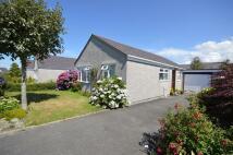 Detached Bungalow for sale in Bro Eglwys, Bethel...