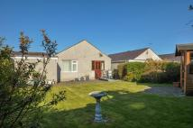 3 bed Detached Bungalow in Bro Eglwys, Bethel...