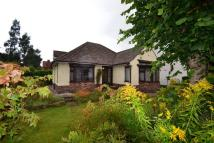 Bungalow to rent in Carrfield Avenue...