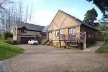 Detached house for sale in NORTHAM 3/4 bed (2...