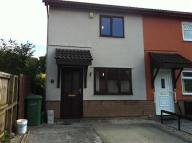 2 bed semi detached house to rent in The Hollies, Brynsadler...