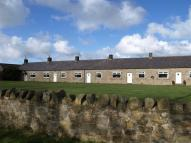 Bungalow to rent in Bamburgh