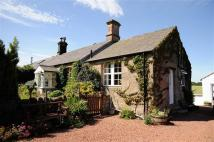 Cottage in Wooler