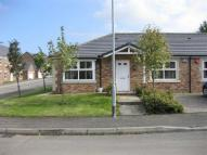 Wooler Bungalow to rent