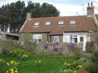 Cottage to rent in Wooler