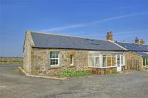 2 bed Cottage in Belford
