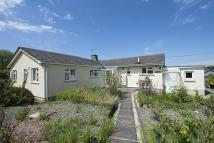 Detached Bungalow for sale in Feidr Brenin, Newport