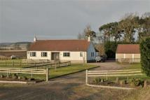 Equestrian Facility property for sale in Giffordtown, Cupar