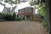 Woodham Detached property to rent