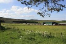 Ballindalloch Land