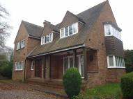 Detached house to rent in Catshill, Bromsgrove