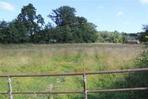 Land in Flimwell to rent