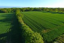 Partridge Green Land for sale