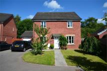 Detached house for sale in Farm Close, Tir-Y-Berth...