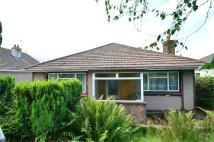 2 bed Detached Bungalow in St Cenydd Road...