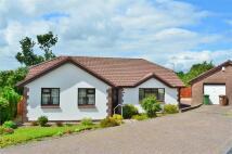4 bedroom Detached Bungalow for sale in Waun Goch, Cefn Hengoed...