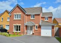 Detached property in Caldey Island Way...