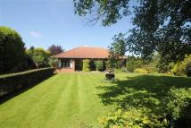 Detached Bungalow in Nidd, Harrogate...