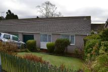 Semi-Detached Bungalow in Liskeard