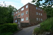 Studio apartment to rent in Leach Green Lane, Rubery...