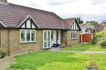 2 bed Detached Bungalow in Whitehall Road...