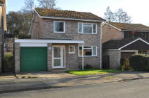 4 bed Detached house in Birch Drive, Brantham