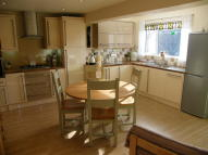 Terraced property for sale in Cwmcelyn Newydd, Blaina...