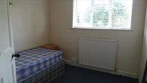Grays Road House Share