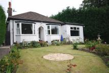 Detached Bungalow in Congleton Road North...
