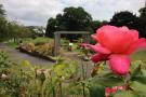 Courtenay park