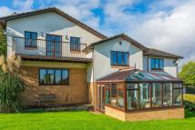 Detached home for sale in Maize House, Highweek