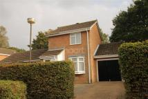 1 bed Detached house to rent in Catkin Close