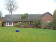 Bungalow in The Bungalow, Ashmount...
