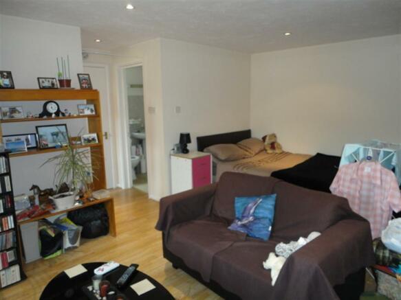 Lounge / bedroom area