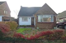 Bungalow to rent in South Drive, Bognor Regis
